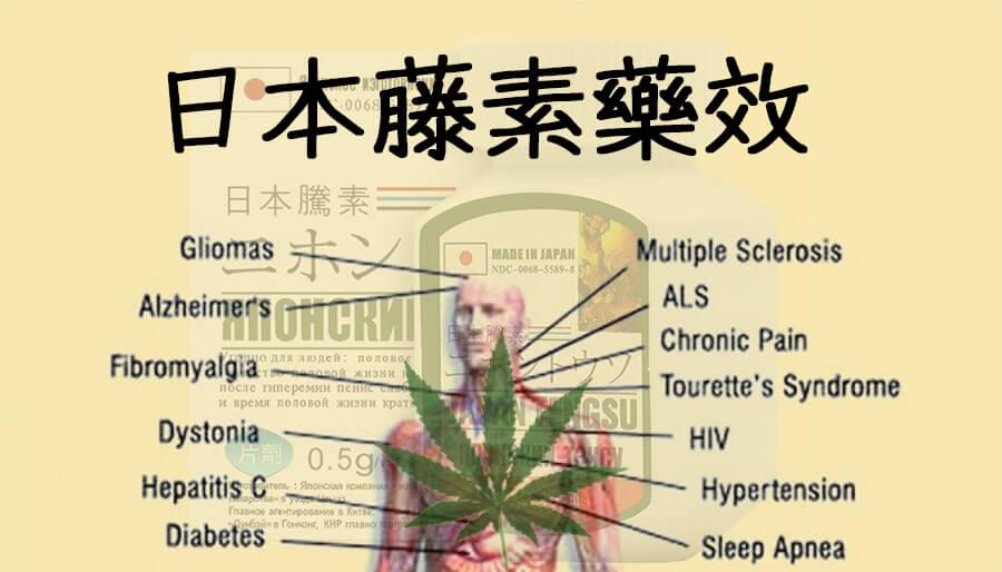 日本藤素藥效